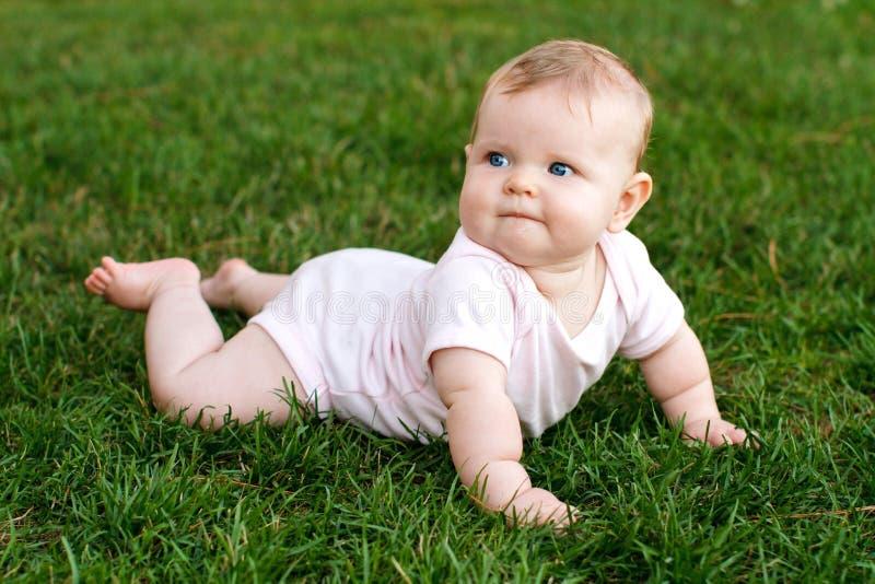 Милый младенец лежа на ее tummy наслаждаясь текстурой мягкой травы стоковая фотография rf