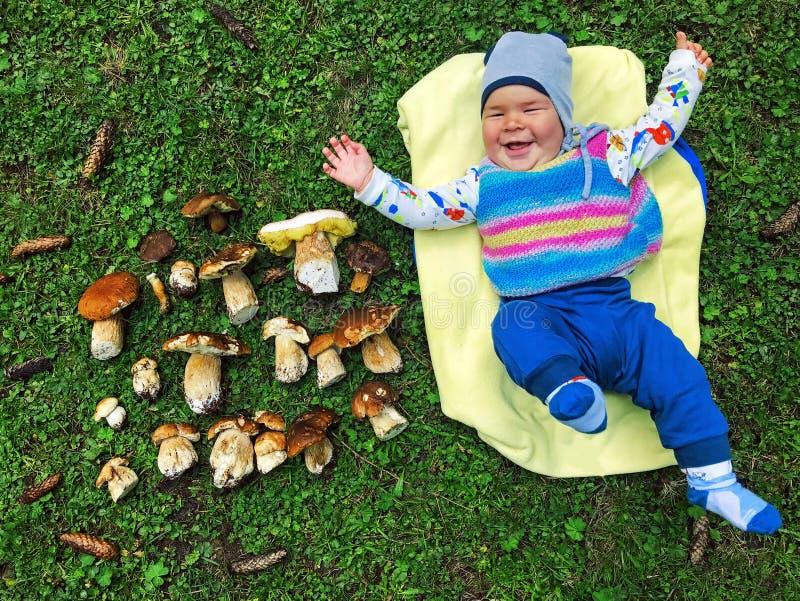 Милый прелестный малый маленький ребёнок собирая белые грибы в лесе стоковое изображение rf