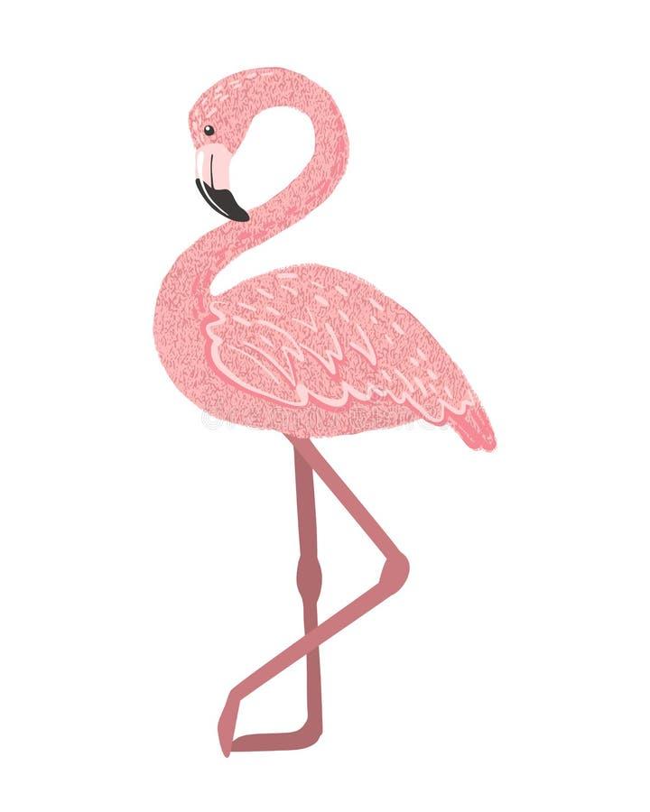 Милый розовый фламинго изолированный на белой предпосылке иллюстрация штока