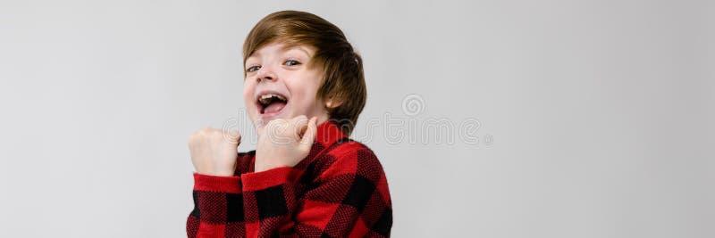Милый уверенно excited усмехаясь маленький кавказский мальчик в checkered рубашке показывая да знак на серой предпосылке стоковое изображение rf