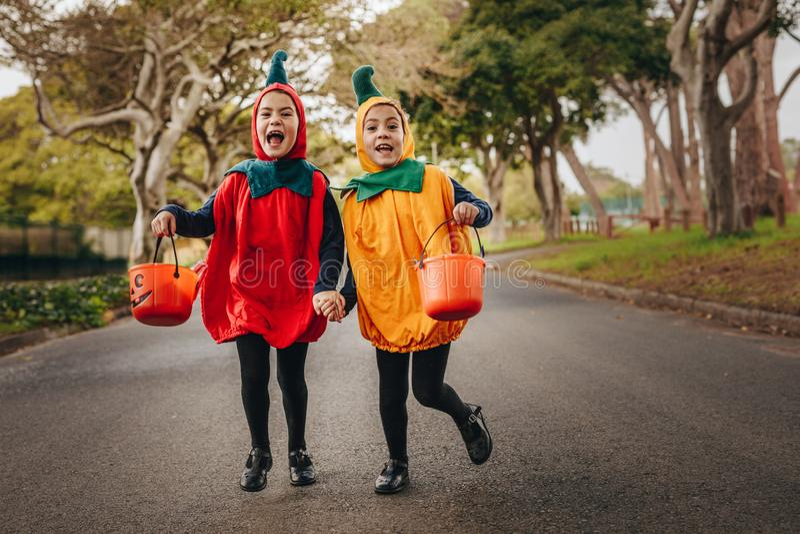 Милый фокус маленьких девочек или обрабатывать в костюме хеллоуина стоковые изображения rf