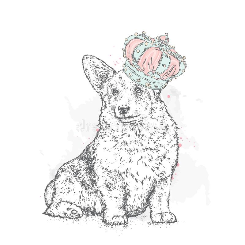Милый щенок с смычками и тапками в точках польки Vector иллюстрация для открытки или плаката, печати для одежд Собака родословной иллюстрация вектора