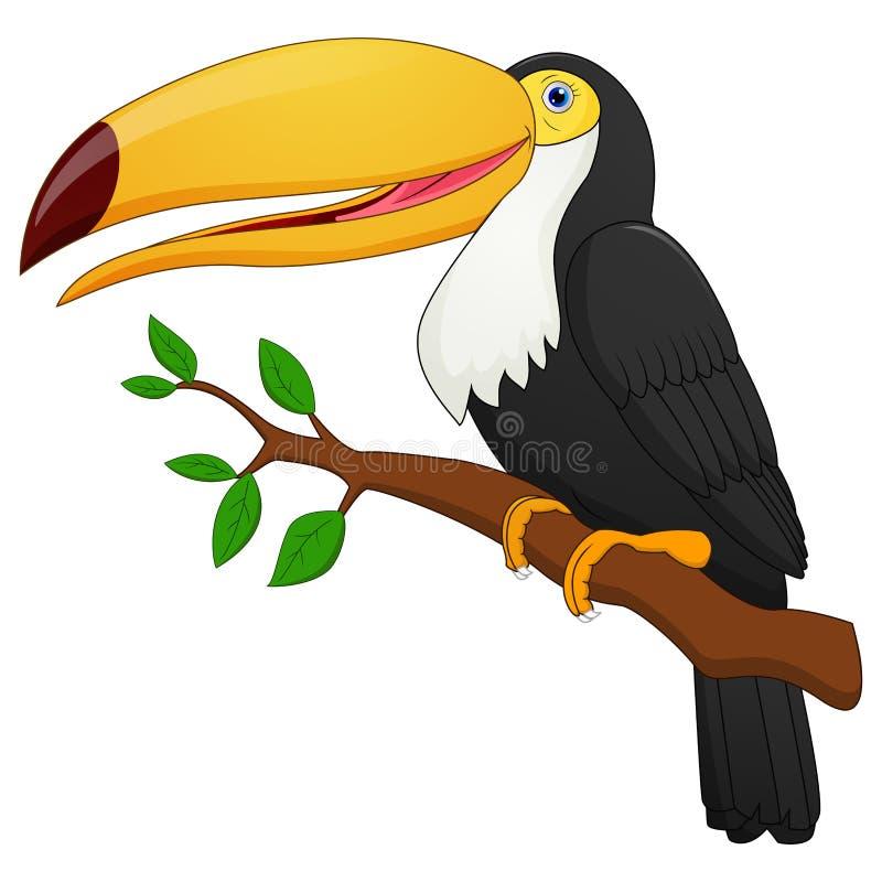 Милый toucan шарж птицы иллюстрация вектора