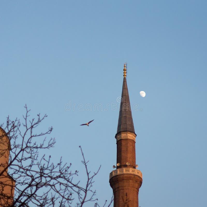 Минарет Hagia Софии стоковое фото rf