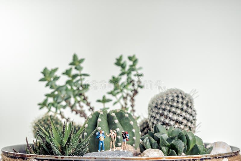 Миниатюрные hikers вдоль ландшафта пустыни стоковое изображение rf