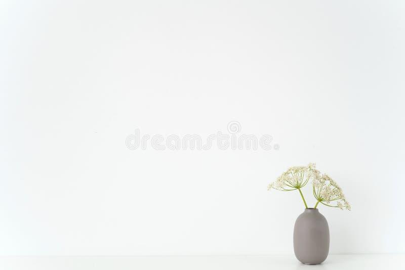Минимальный крытый интерьер Серая ваза с одичалым букетом хозяина на таблице на белой предпосылке Милое мягкое домашнее оформлени стоковое фото rf