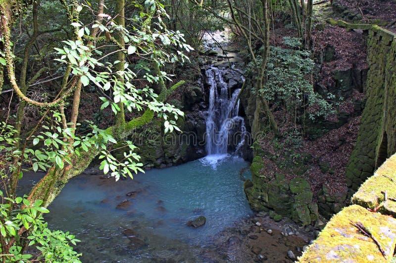 Миниый водопад стоковые фотографии rf