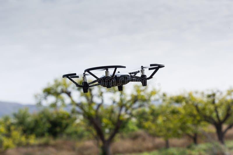 Мини летание трутня в парнике на фруктовых дерев дерев подрезывает стоковые изображения