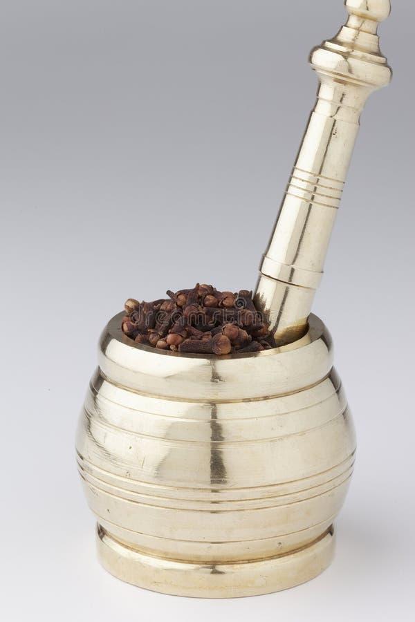 Миномет и пестик с гвоздичным деревом стоковые фото