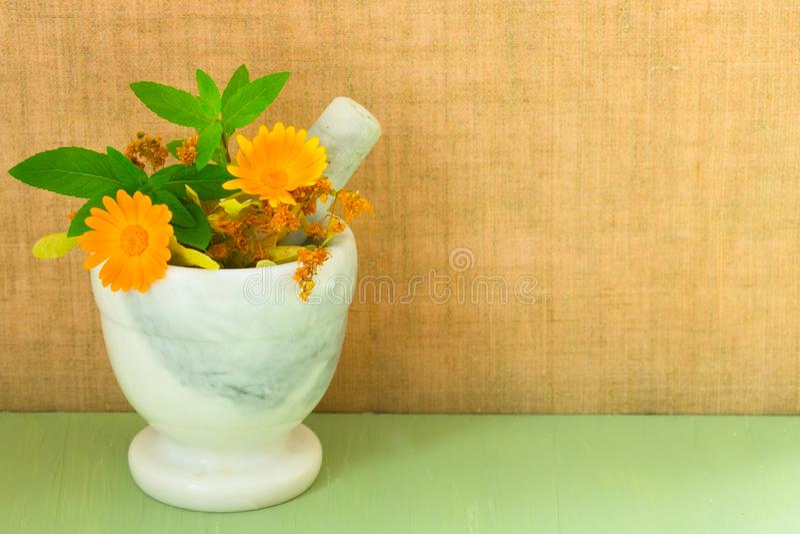 Миномет с целебными цветками трав calendula, стоцвета, мяты и травяной тинктуры r Органическая косметология E стоковое изображение