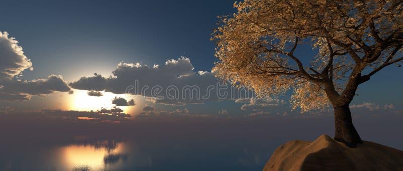 Миндальные деревья стоковая фотография