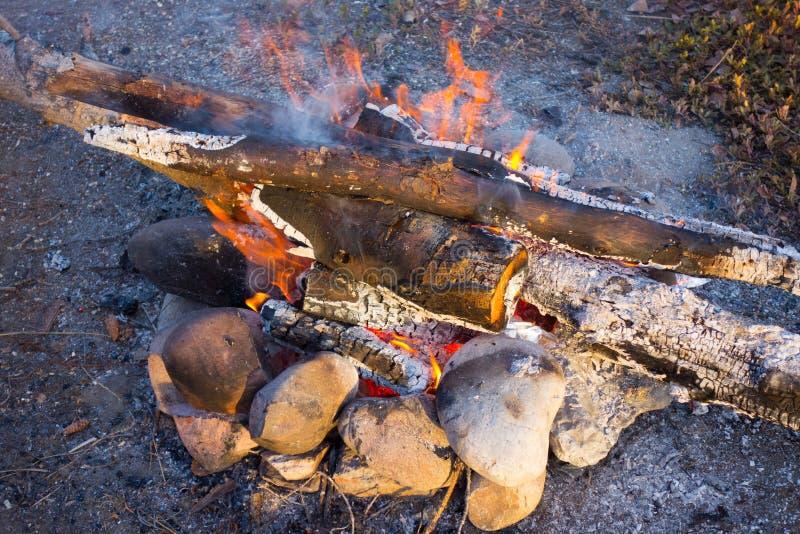 Мирное место для лагеря в территориях Юкона стоковое фото