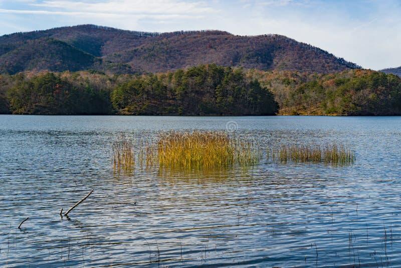 Мирный взгляд осени резервуара бухты Carvins, Roanoke, Вирджинии, США стоковое изображение