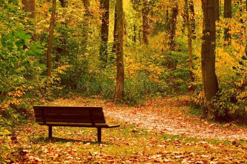 мирный отдыхать места стоковое изображение