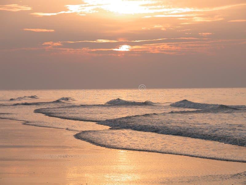 мирт пляжа стоковое изображение rf