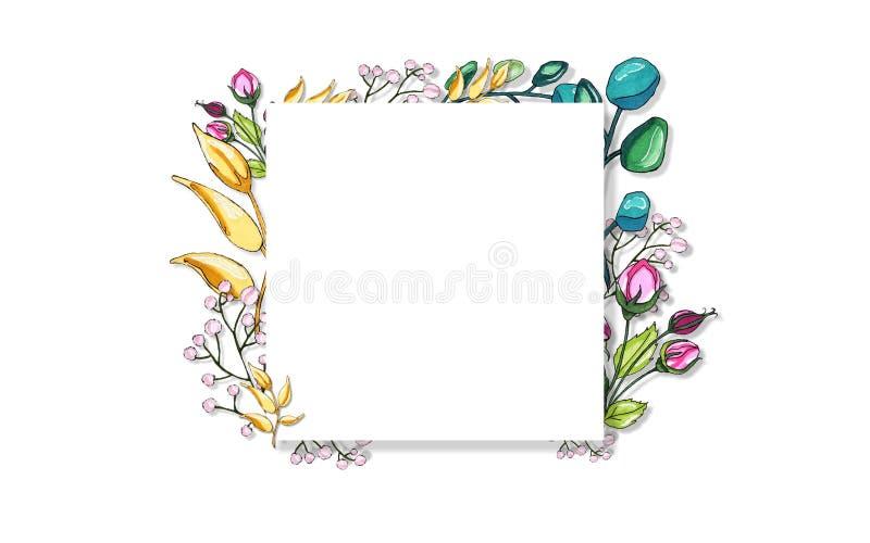 Мир овоща Цветки и хворостины Чувствительные хворостины цветков иллюстрация вектора