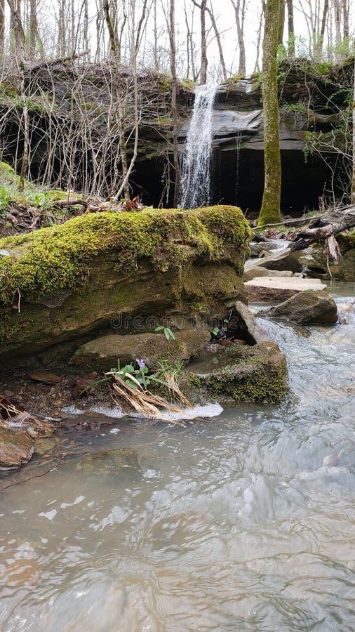Мистический перерастанный водопад стоковые фото
