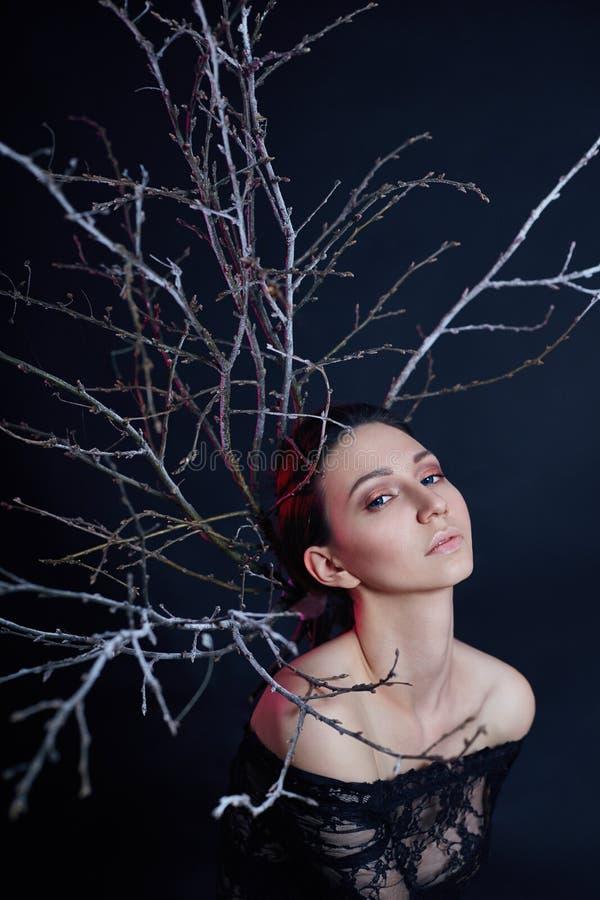 Мистический портрет армянской женщины с большими голубыми глазами и ветвями позади Симпатичная шикарная девушка представляя в пла стоковое фото rf