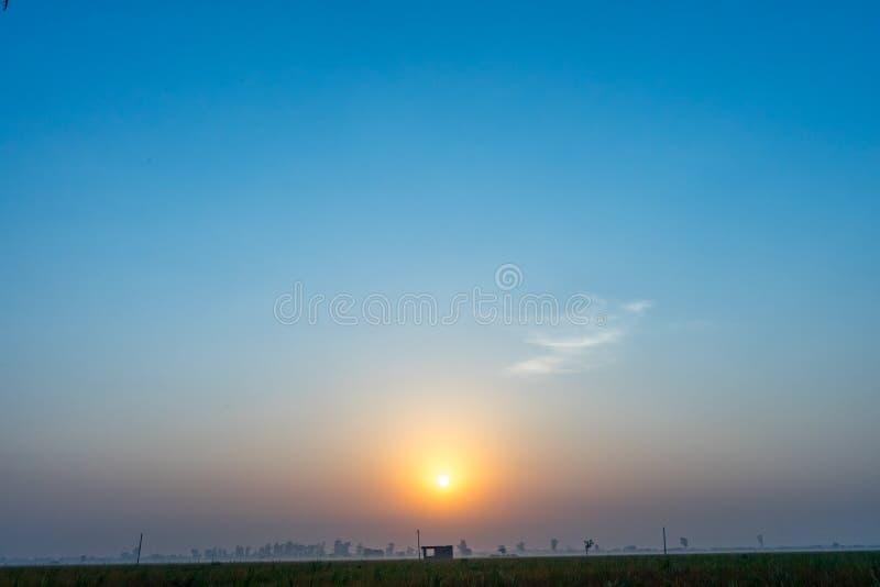 Мистическое поле утра стоковая фотография rf