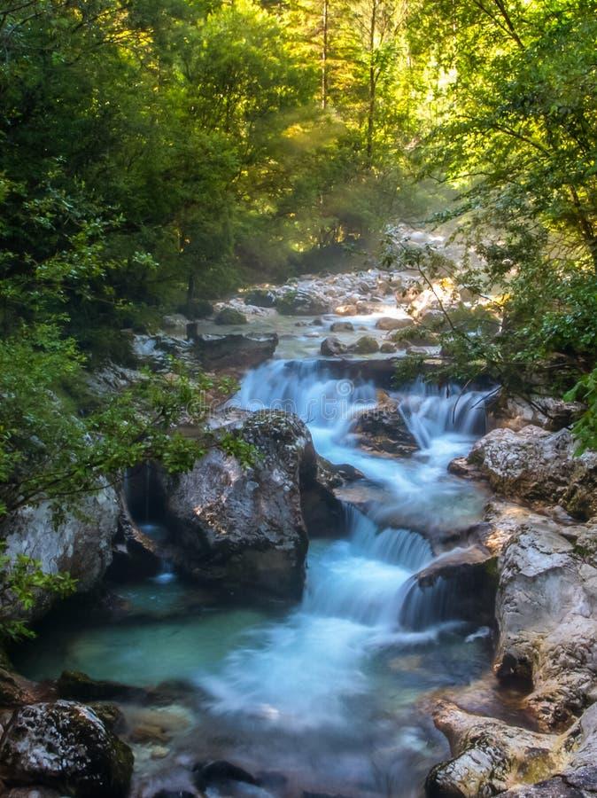 Мистическое утро на голубом реке Soca Национальный парк Triglav, Словения стоковое изображение rf