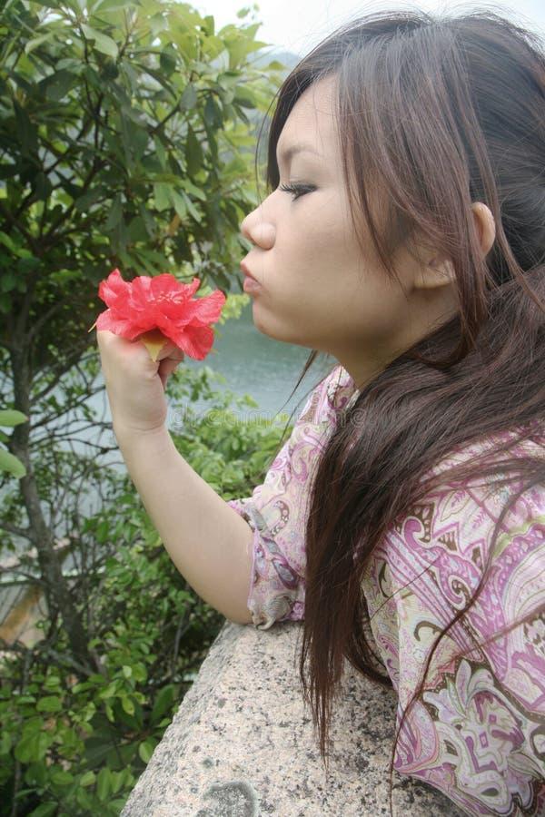Милая азиатская девушка с цветком стоковая фотография rf