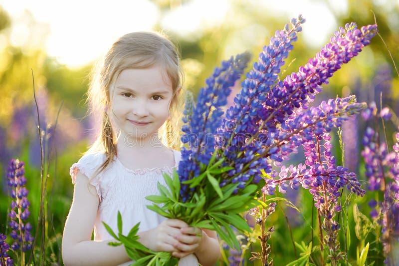 Download Милая девушка в зацветая поле Lupine Стоковое Изображение - изображение насчитывающей aloha, счастливо: 41660475