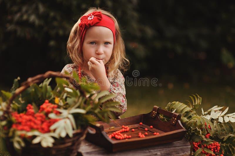 Милая девушка малыша в саде осени делая ягоду рябины отбортовывает стоковое фото rf