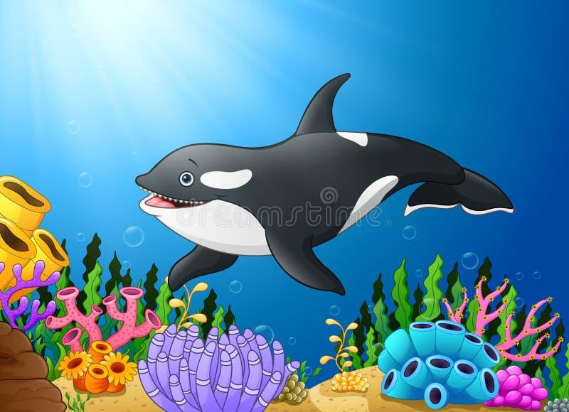 Милая дельфин-касатка под водой иллюстрация штока