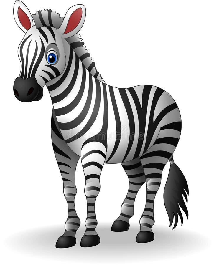 Милая зебра шаржа на белой предпосылке иллюстрация вектора