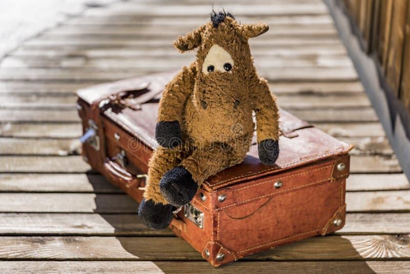 Милая игрушка лошади чучела на чемодане стоковые фотографии rf