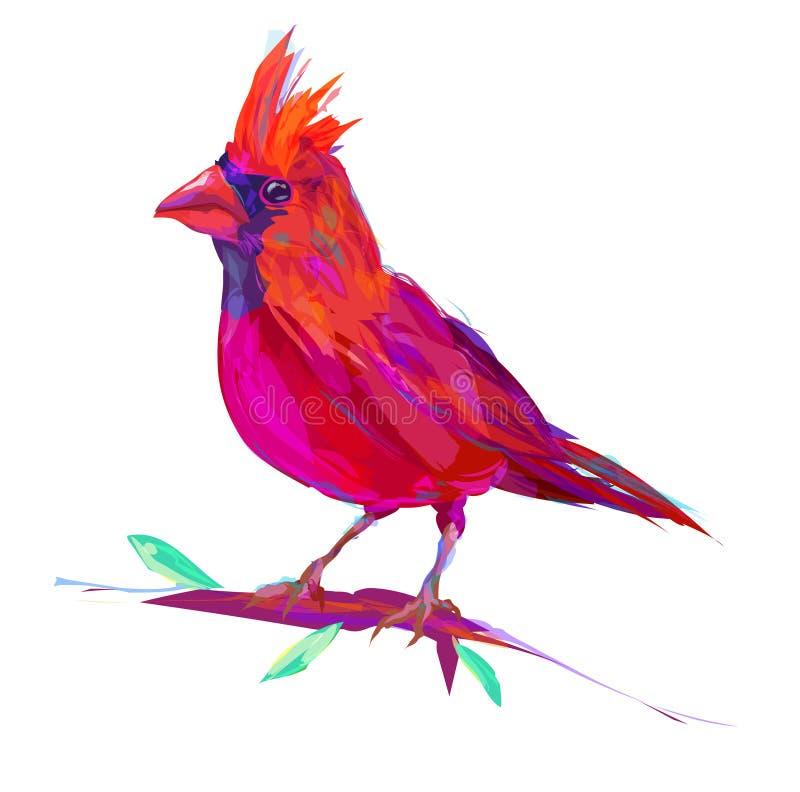 Милая красная кардинальная экзотическая птица иллюстрация вектора