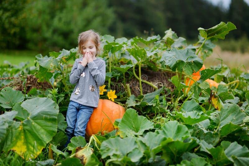 Милая маленькая девочка сидя на тыкве стоковые изображения