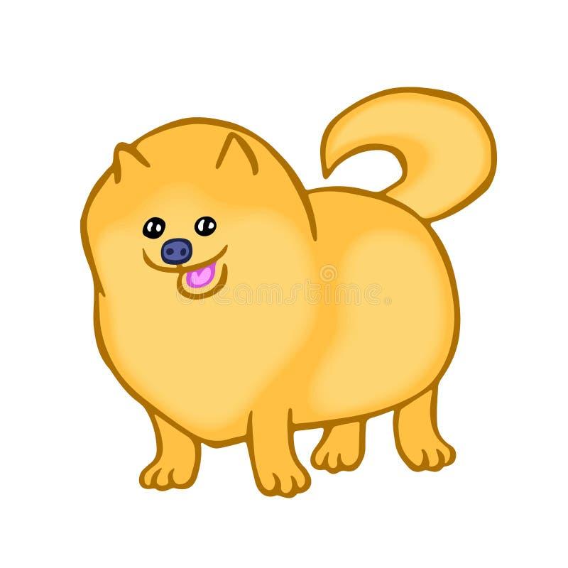 Милая собака шпица Pomeranian также вектор иллюстрации притяжки corel бесплатная иллюстрация