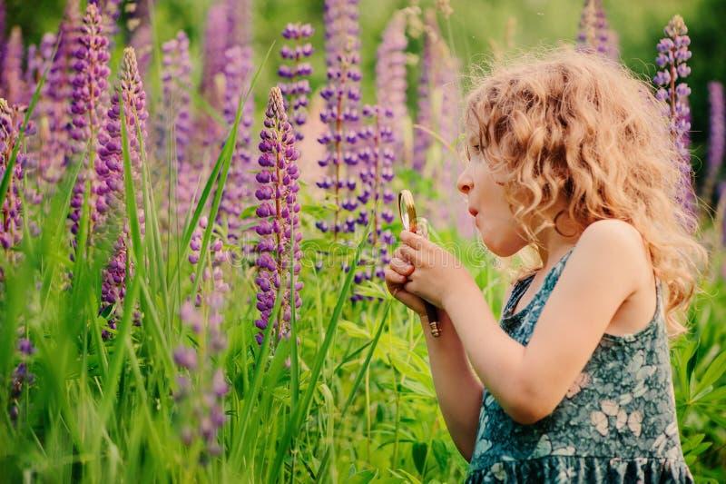 Милая удивленная природа девушки ребенка исследуя с loupe на поле лета стоковое изображение