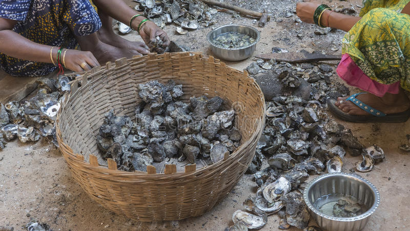 Мидии чистки индийских женщин после удить Жизнь рыбы стоковая фотография rf