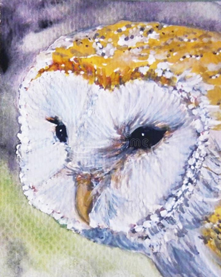 Милое искусство сыча амбара стоковое фото