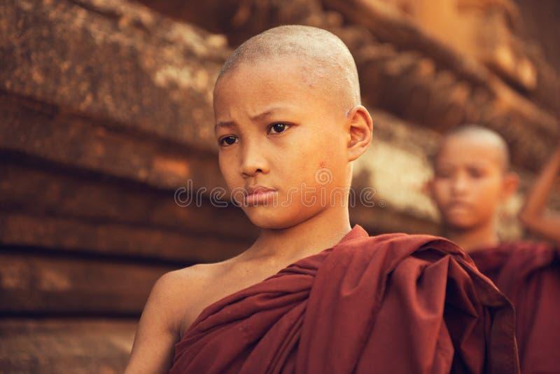 Милостыни утра буддийских монахов послушника идя стоковое изображение rf