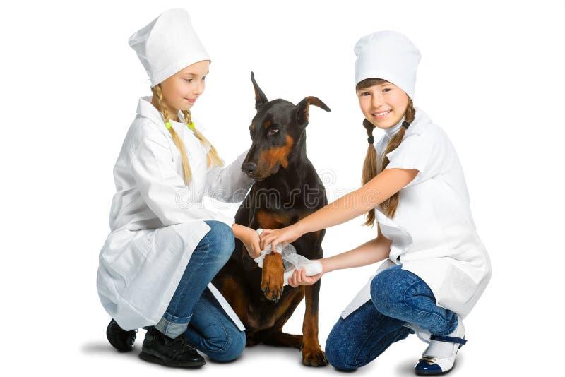 Милые маленькие девочки одели как собака обработанная доктором стоковые фотографии rf