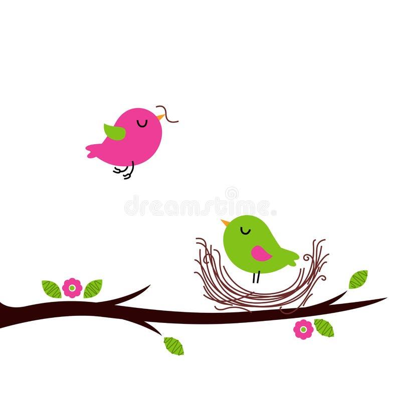 Милые птицы вложенности весны изолированные на белизне бесплатная иллюстрация