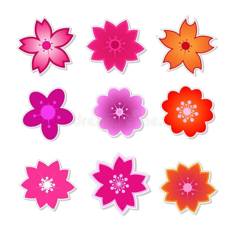 Милый вектор Сакуры цветка иллюстрация вектора