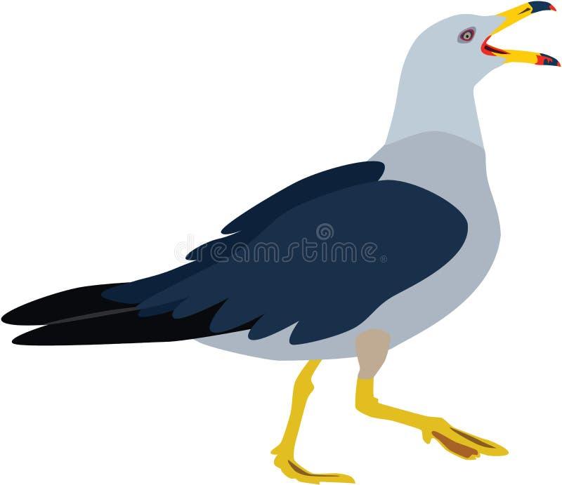 Милый красочный вектор чайки стоковое фото rf