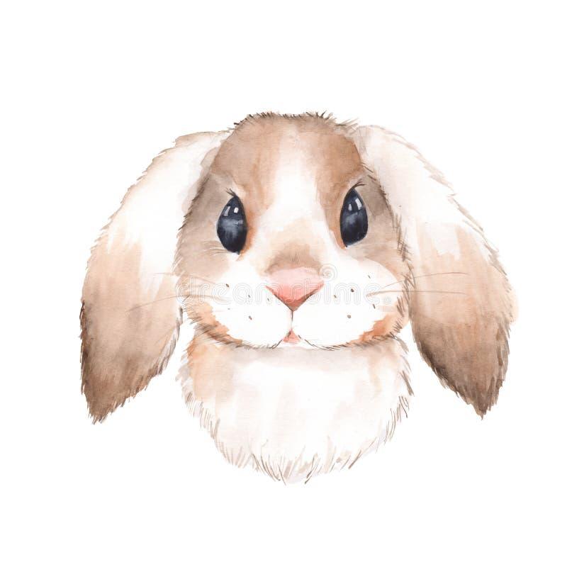 милый кролик Иллюстрация 1 акварели бесплатная иллюстрация