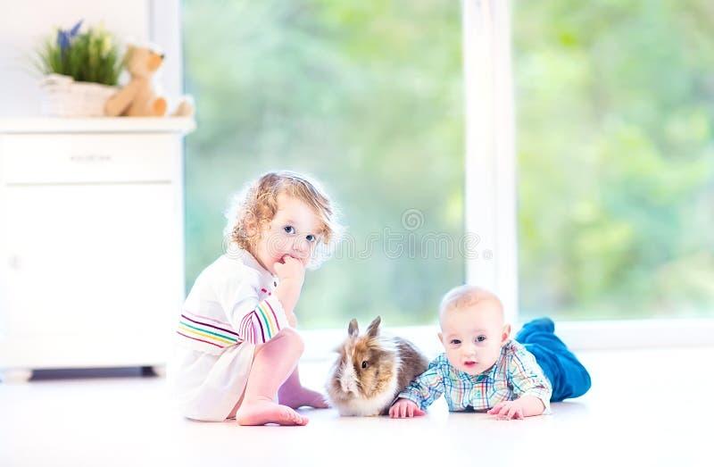 Download Милый маленький младенец и его сестра малыша с реальным зайчиком Стоковое Фото - изображение насчитывающей пасха, красивейшее: 41657412