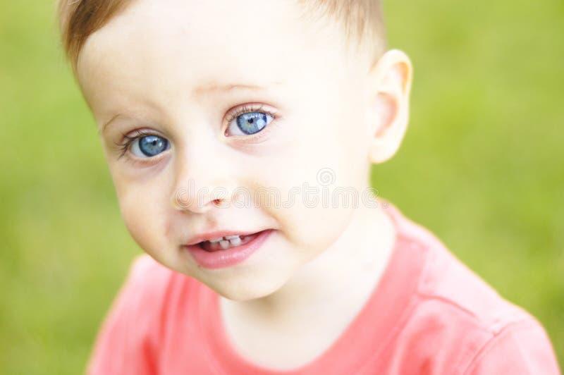 Download Милый малый мальчик на каникулах Стоковое Изображение - изображение насчитывающей красивейшее, shrubs: 41662015