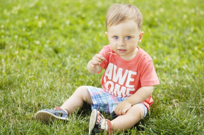 Download Милый малый мальчик на траве Стоковое Фото - изображение насчитывающей конец, outdoors: 41661766