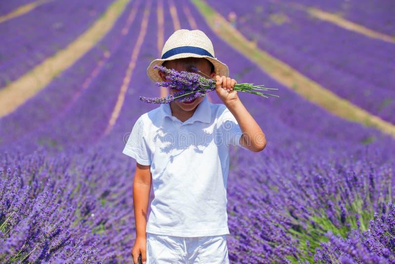 Милый мальчик в полях lavander стоковое фото
