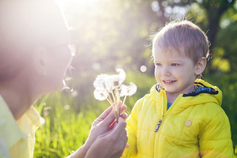 Милый мальчик делая a с перед дуть высушенные одуванчики в руках матери стоковые фото
