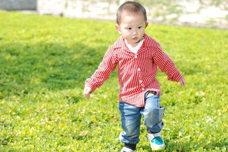 Милый мальчик идя на лужайку стоковое фото rf