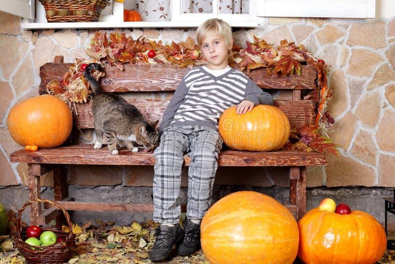 Милый мальчик на красочной предпосылке осени стоковая фотография rf