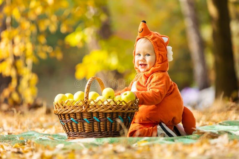 Милый ребёнок одел в костюме лисы сидя корзиной с яблоками стоковые фото